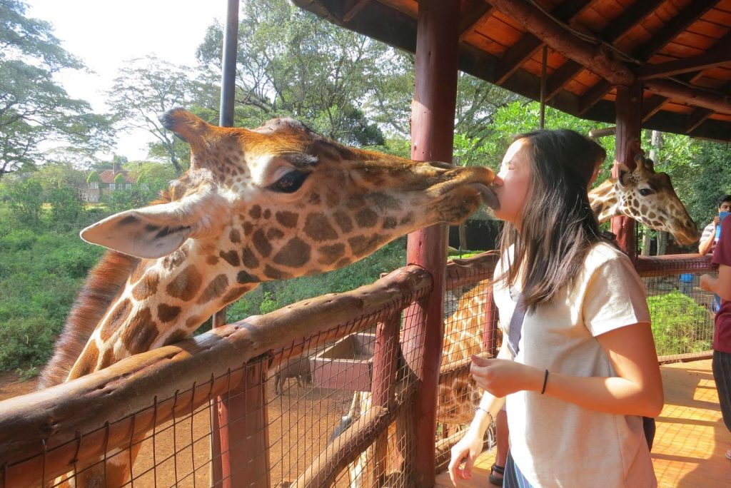 Smacking lips with a giraffe